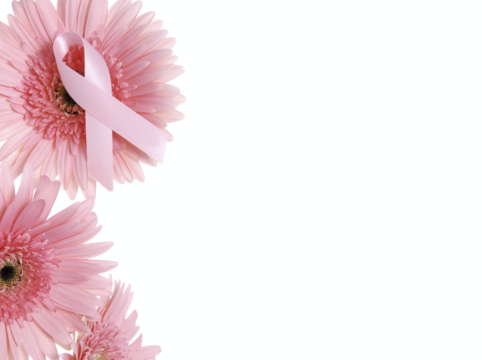 Mothers Day Special The Breast Cancer Charities Of America